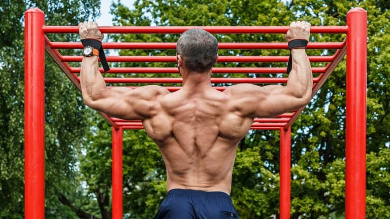 Calisthenics Workout Guide