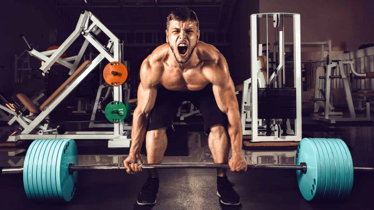 Complete PHUL Workout Guide